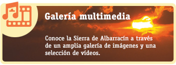 Galería Multimedia