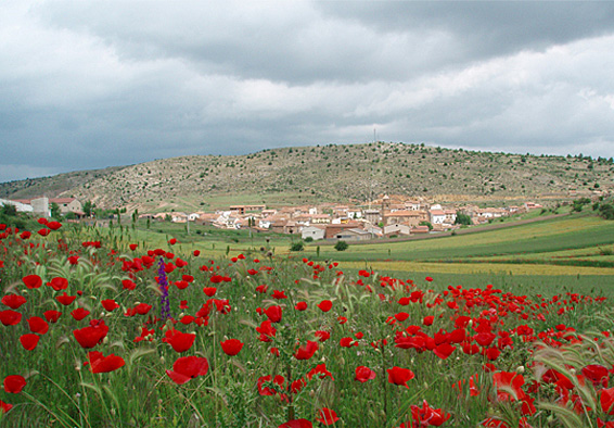 Vista general de Monterde de Albarracín