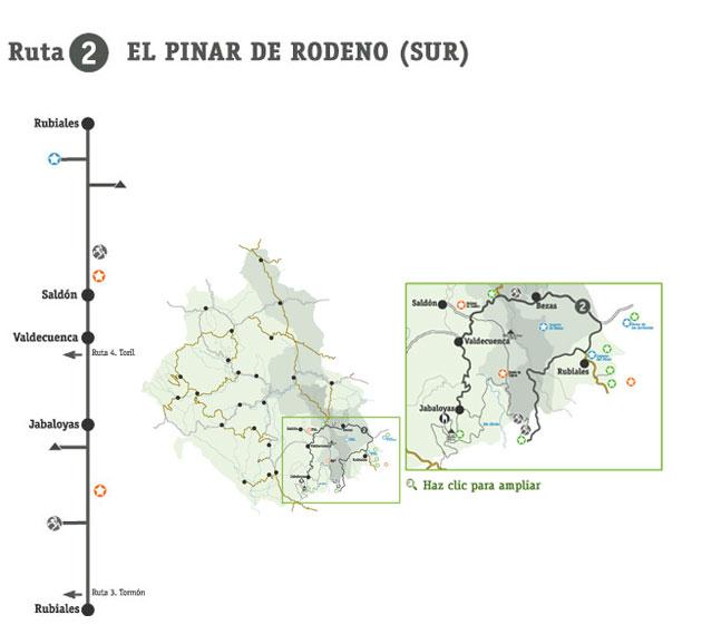 Rutas - El pinar de Rodeno